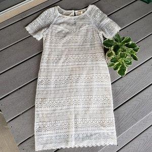 Meadow Rue Crochet Scalloped Bohemian Shift Dress